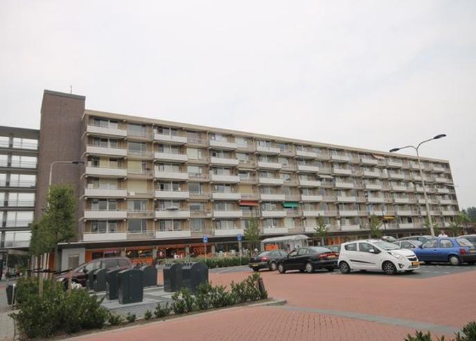 Chopinplein 113 in Culemborg 4102 CW