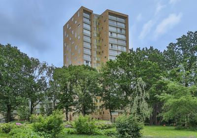 Vechtstraat 266 in Groningen 9725 CZ