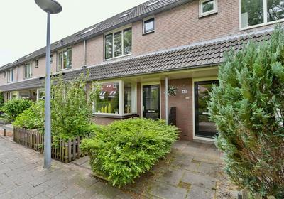 Helena Kuipers-Rietbergstraat 64 in Alkmaar 1827 LE