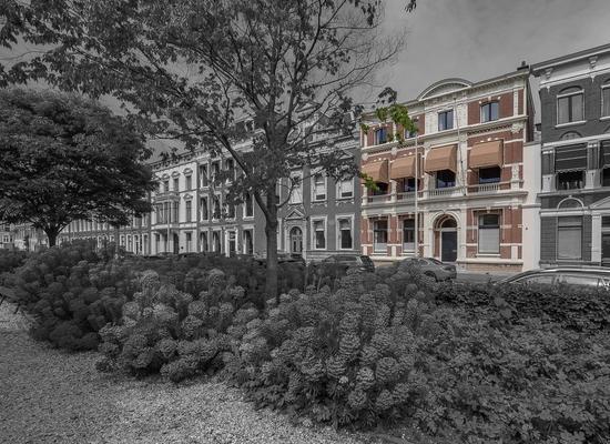 Nassauplein 33 in 'S-Gravenhage 2585 ED