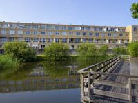 Kromboomsveld 47 in Zandvoort 2041 GK