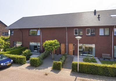Golden Champion 4 in Huissen 6851 VM