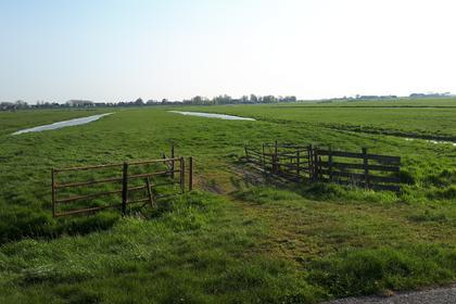 Achtermiddenweg in Aarlanderveen 2445 AA
