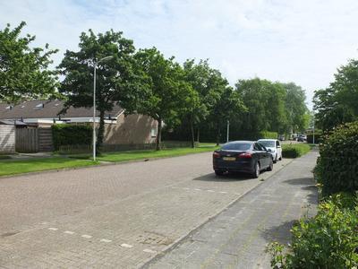 IJsvogel 48 in Dokkum 9101 XT