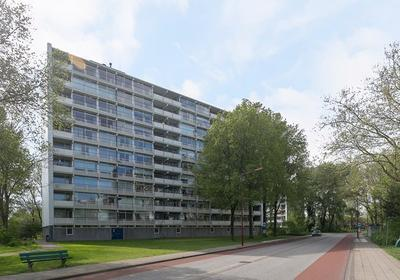 Buizerd 105 in Heerenveen 8446 KM