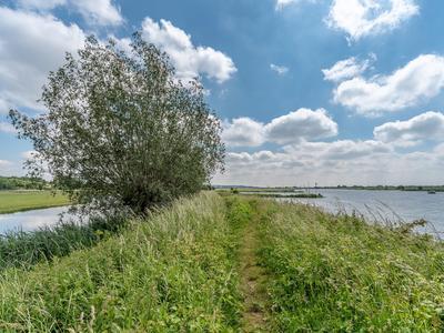Woudweg 50 in Elst Ut 3921 CS
