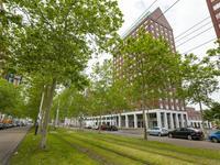 Laan Op Zuid 154 in Rotterdam 3071 AA