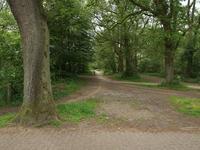 Bergweg 76 71 in Baars 8336 MC
