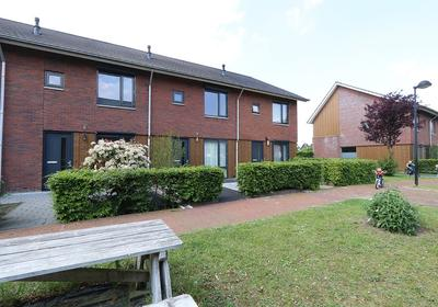 Grind 24 in Kampen 8266 LD