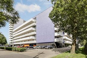 Vijfhagen 381 in Breda 4812 XT