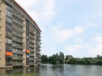 Clazina Kouwenbergzoom 256 in Rotterdam 3065 HG