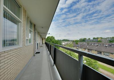 Middachtensingel 246 in Arnhem 6825 HW