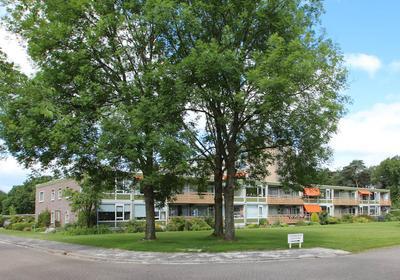 Meent 44 in Norg 9331 EC