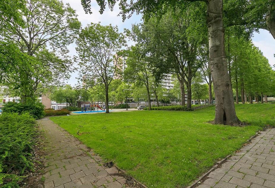 Zandkreek 44 in Rotterdam 3079 AT