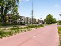 Helperzoom 339 in Groningen 9722 BR
