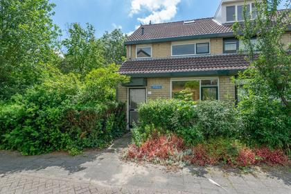 Salzburg 83 in Utrecht 3524 KT