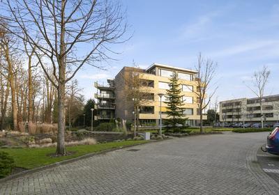 Mariaplein 25 in Roosendaal 4702 GM