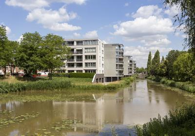 Schaapsveldje 134 in 'S-Hertogenbosch 5223 ZT