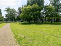 Crooswijksestraat 98 in Rotterdam 3034 AP