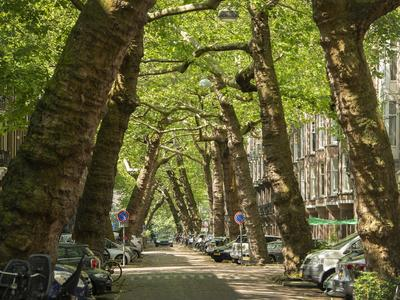 Lomanstraat 26 Iii in Amsterdam 1075 RB