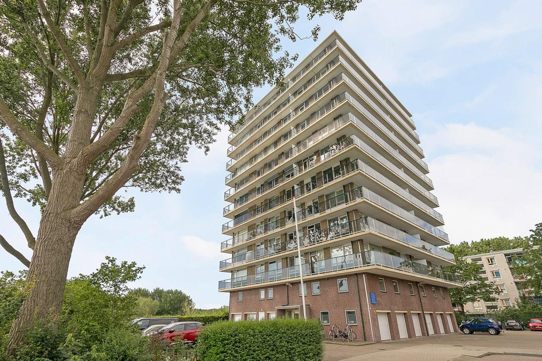 Adriaen Brouwerstraat 102 in Maassluis 3141 JC