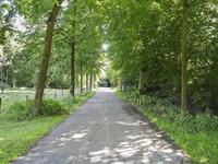 Ruwenbergstraat 3 in Sint-Michielsgestel 5271 AG