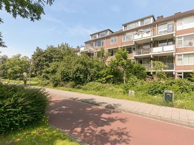 Royaardsplein 82 in Schiedam 3123 AP