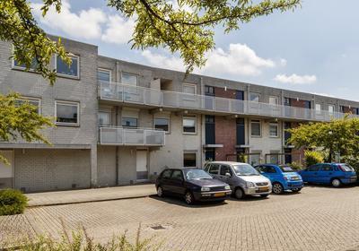 Pedro Luis Brionstraat 21 in Utrecht 3573 BT