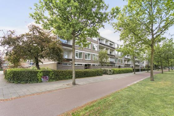 Veldmaarschalk Montgomerylaan 446 in Eindhoven 5623 LE