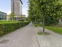 Lutmastraat 14 E in Amsterdam 1072 JR