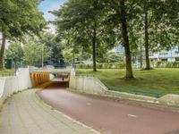 Trommelaar 35 in Veenendaal 3905 BS