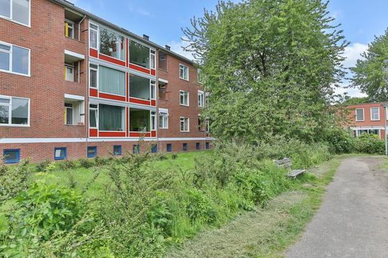 Populierenlaan 61 in Groningen 9741 HB