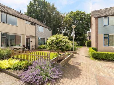 Ireneplein 14 in Nieuwleusen 7711 JT