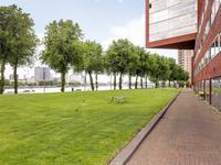 Kabelhof 63 in Rotterdam 3072 WJ