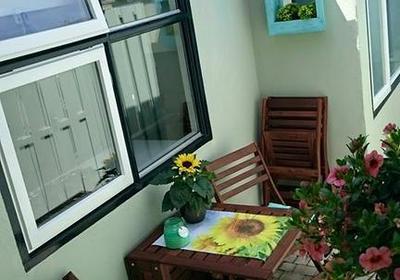 Van Speijkstraat Appartement in Zandvoort 2041 KM