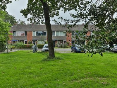 Zwanebloemweg 43 in Haren Gn 9753 JG