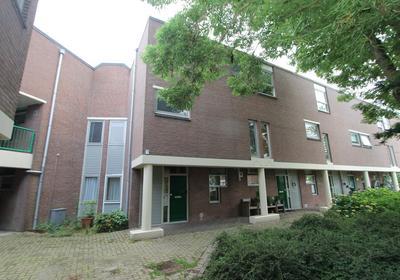 Castor 60 in Berkel En Rodenrijs 2651 GW