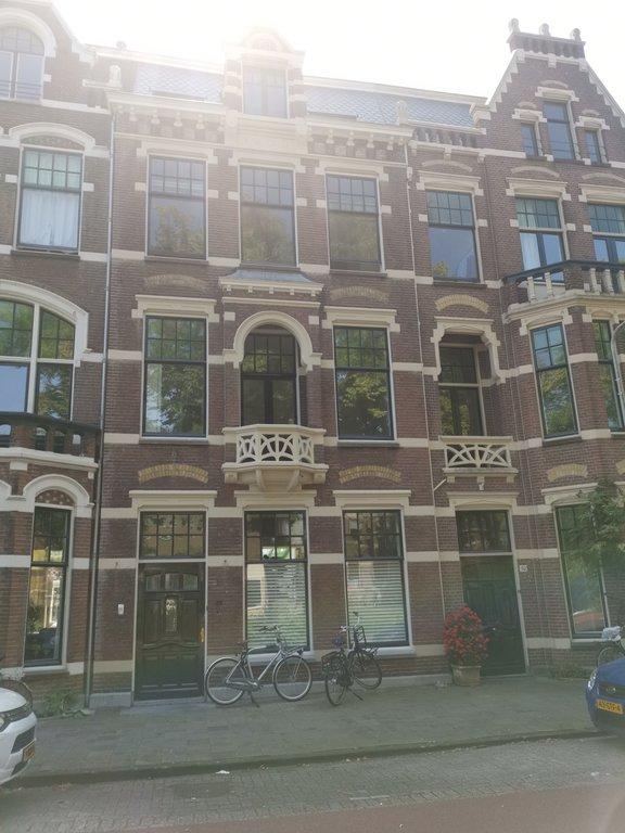 Witte Singel, Leiden