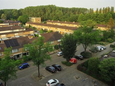 Wildenborglaan 36 6 in Arnhem 6825 GD