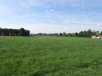 Vossendel 2 in Groessen 6923 SB