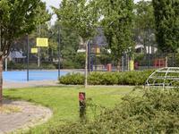 Punter 49 39 in Lelystad 8242 GP