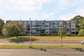 De Reiger 215 in Hoogeveen 7905 GM