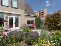 Fluitekruid 72 in Den Hoorn 2635 KT