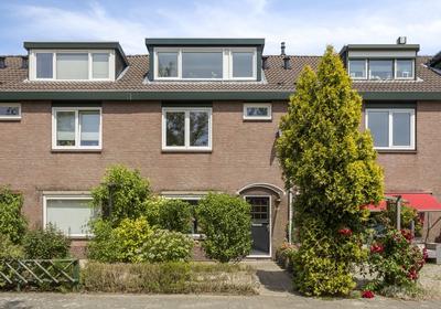 Soderblomstraat 262 in Hoofddorp 2131 GS