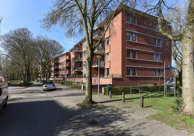Iepenlaan 108 in Alkmaar 1815 EH