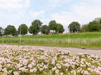 Sluisleede 14 in Barendrecht 2991 WD