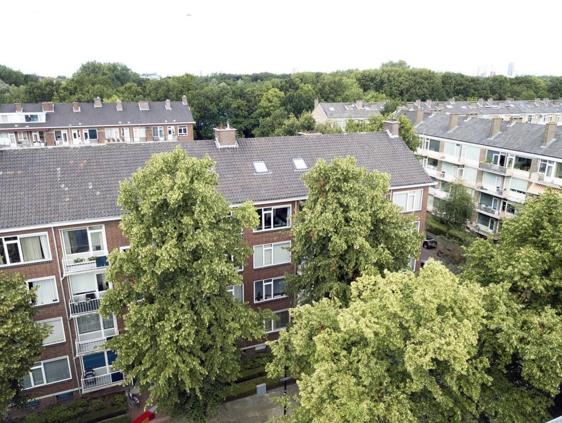 Dr H. Colijnlaan 144 in Rijswijk 2283 XS