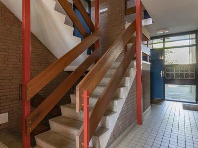 Zoom 49 in Oisterwijk 5061 RB