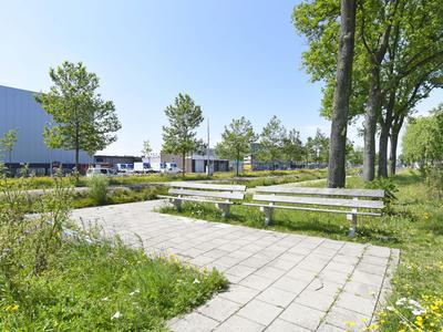 H.N. Werkmanweg 17 in Haarlem 2031 BA