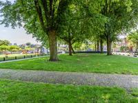 Rhijnvis Feithstraat 18 in Utrecht 3532 GP